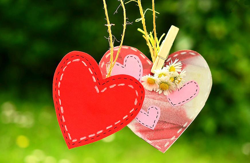 Srdce 1a